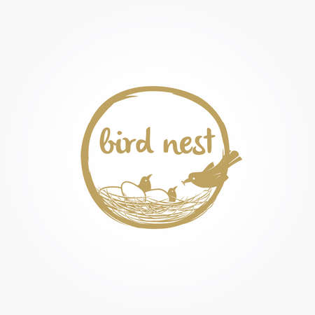 Bird nest design, bird mother with eggs in nest vector icon.