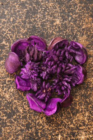 Heart made of dried violet flowers on vintage book photo