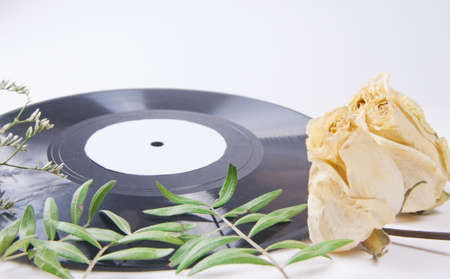 Vintage vinyl records and dried flowers on a light table photo