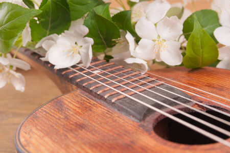 Old acoustic guitar and spring flowers on the table photo