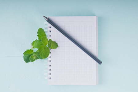 blank notebook, pencil and mint on a wooden surface photo
