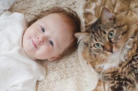 The large house cat lying near newborn baby Stockfoto