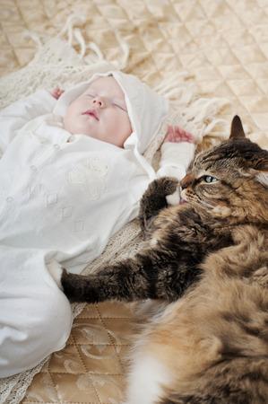 large house: large house cat lying near sleeping newborn baby Stock Photo