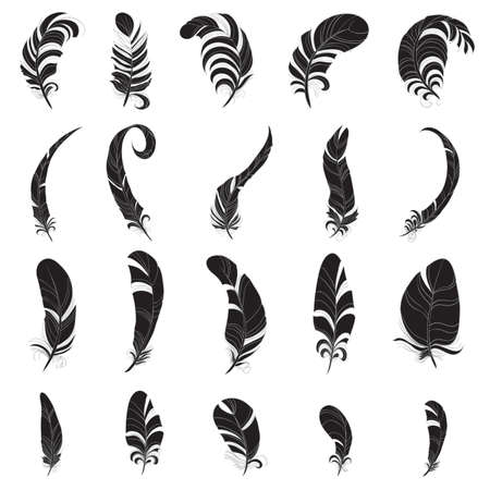 Feather silhouette set Vector