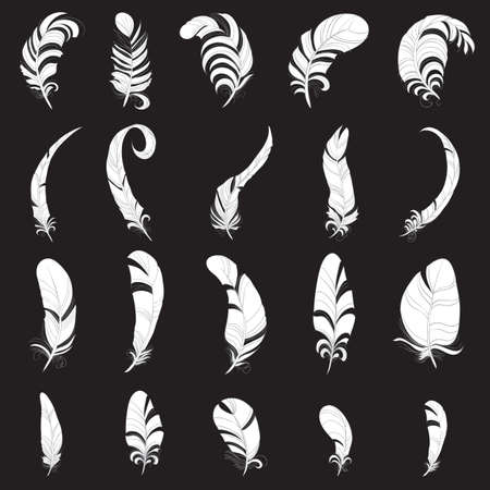 Feather white  silhouette set Vector