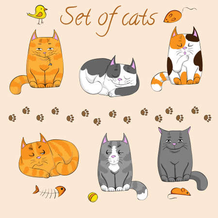 set of cute cats Vector