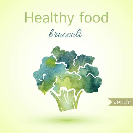 inflorescence: healthy food illustration of watercolor broccoli. vector