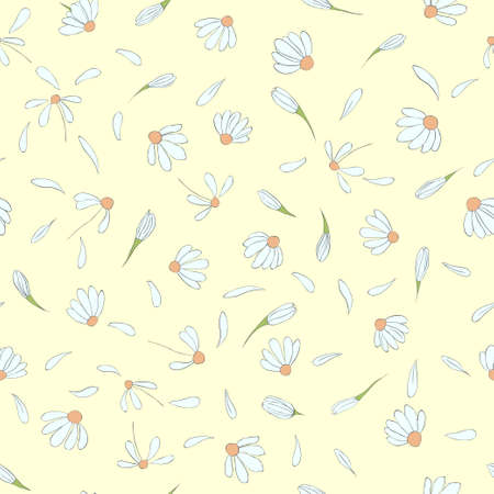 Seamless pattern with cute chamomile flowers Vector