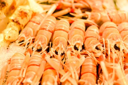 Fresh shrimp on ice at fish market Zdjęcie Seryjne