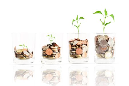 Ascending scale of financial revenues, or profit in agriculture concept with coins in jars inside which little green plants are growing