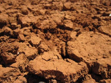 aridness: Dry soil texture