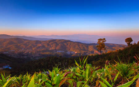 Tropical forest and mountain ranges, Chiang Mai, Thailand