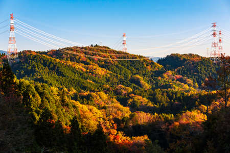 High voltage electricity post over colorful forest on mountain in autumn season