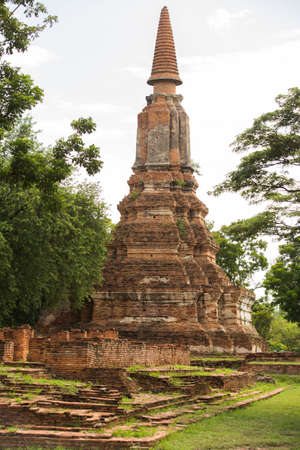 thai traditional ancient ruin red brick stupa in old town Ayutthaya an ancient city in Thailand outdoor green yard