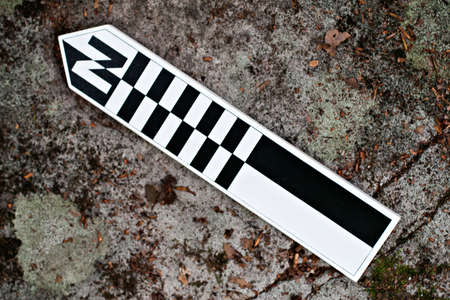 Archaeological north arrow with metric scales Standard-Bild