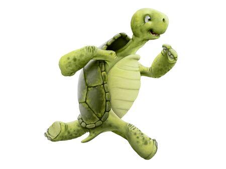 schildkröte: Schildkröte