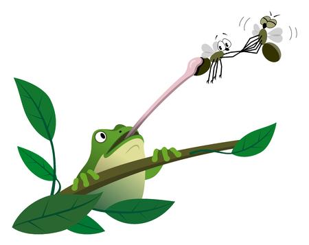 Frog caching fly Иллюстрация