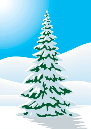 Snow covered fir tree