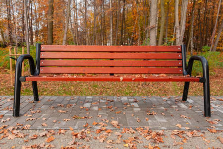 A park bench with autumn leaves and water drops. Brown bench planks. Raindrops. Yellow leaves and park. A walk in the fall. October details. October, Poland, Mazovia.