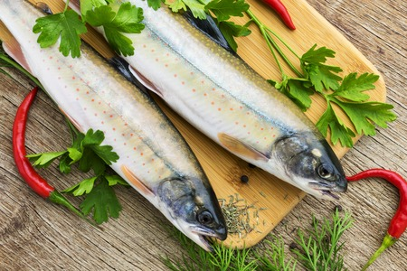 two fresh uncooked fish one kind of salmon with aromatic herbs and chilli pepper on wooden cutting board Stock Photo
