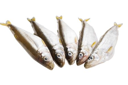 five pieces of raw delicacy smelt-fish isolated on white background before cooking protein diet dish