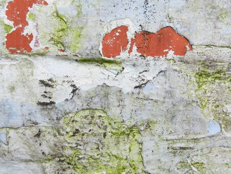 texture: wall texture