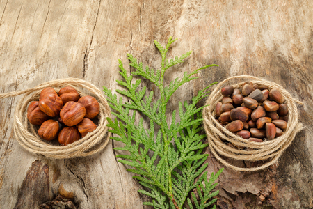 Hazelnuts and pine nuts on the surface of old wood. Closeup Stock Photo