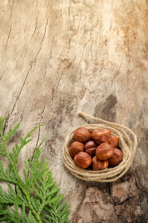 Hazelnuts on the surface of old wood. Closeup