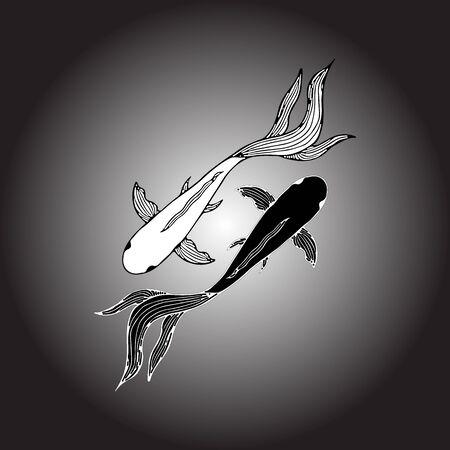 Abstract hand drawn of two carp fishes. Hand drawn koi fish. Japanese carp. Top view.