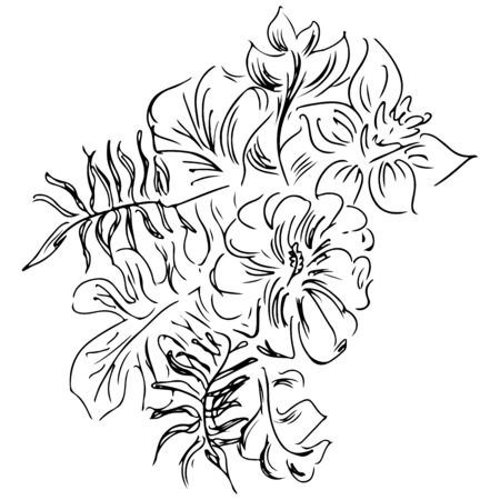 hand drawn sketch with tropical leaves and flowers isolated on white background. Exotic botanical design elements for wedding invitation cards, cosmetics, spa, perfume, beauty salon. Line art. Reklamní fotografie