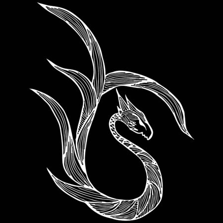 Hand drawn vector dragon illustration isolated on black background. Fantastic dragon icon. Freehand mythology aminal. Fantasy outline illustration.
