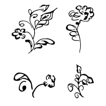 Flowers and branches hand drawn doodle collection isolated on white background. 4 floral graphic elements. Big  set. Outline collection. Reklamní fotografie - 124795980