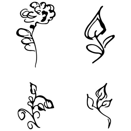 Flowers and branches hand drawn doodle collection isolated on white background. 4 floral graphic elements. Big  set. Outline collection. Reklamní fotografie - 124795982