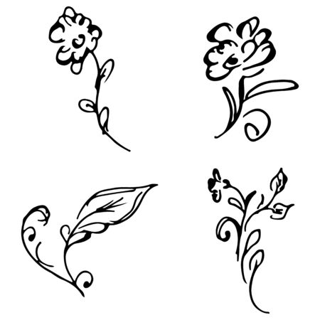 Flowers and branches hand drawn doodle collection isolated on white background. 4 floral graphic elements. Big  set. Outline collection. Reklamní fotografie - 124796054