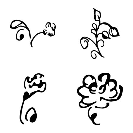 Flowers and branches hand drawn doodle collection isolated on white background. 4 floral graphic elements. Big  set. Outline collection. Reklamní fotografie - 124796059