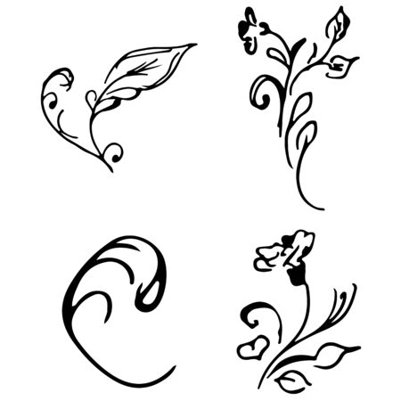 Flowers and branches hand drawn doodle collection isolated on white background. 4 floral graphic elements. Big  set. Outline collection. Reklamní fotografie - 124796063