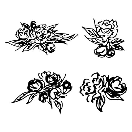 Abstract peonies and roses isolated on white background. Hand drawn floral collection. 4 floral graphic elements. Big  set. Outline icons Reklamní fotografie - 124796086