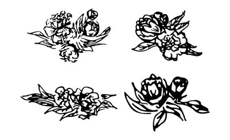 Abstract peonies and roses isolated on white background. Hand drawn floral collection. 4 floral graphic elements. Big  set. Outline icons Reklamní fotografie - 124796088