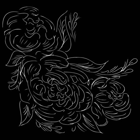 Realistic peonies outline hand for decorative design. Peonies outline hand in engraved style on black background. Ilustrace