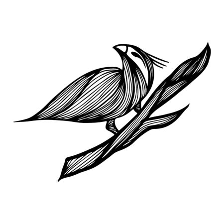 Bird hand-drawn branch in outline style on white background. Background vector illustration. Bird hand-drawn branch in the abstract style. Vector design illustration. Ilustrace