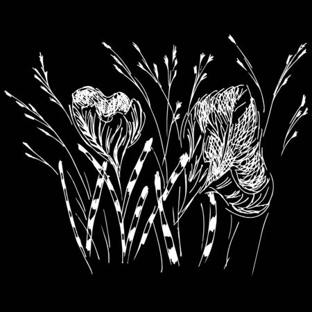 Linear icon with white wildflowers outline hand on black background. Cute hand drawn illustration. Flower pattern. White background isolated.