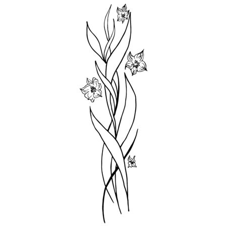 Engraved hand drawn abstract orchid. Retro flowers hand outline orchid, great design for any purposes. Outline vector. Nature background. Tropical plant. Floral design. Abstract art background. Ilustracja