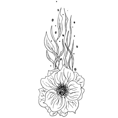 Engraved hand drawn abstract orchid. Retro flowers hand outline orchid, great design for any purposes. Outline vector. Nature background. Tropical plant. Floral design. Abstract art background. Stock Illustratie