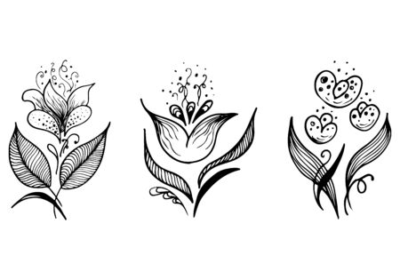 Set of summer tropical flowers. Floral botanical flower set isolated on white background. Hand drawn vector collection. Botanical Hawaii nature. Tropical palm icon. Hawaiian vector tattoo illustration.