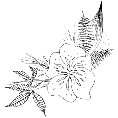 Engraved hand drawn abstract orchid. Retro flowers hand outline orchid, great design for any purposes. Outline vector. Nature background. Tropical plant. Floral design. Abstract art background. Çizim