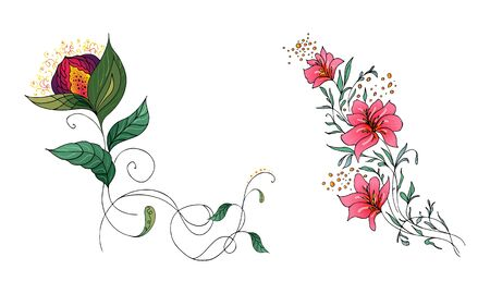 Set of two summer colorful tropical flowers. Floral botanical flower set isolated on white background. Hand drawn vector collection. Botanical Hawaii nature. Tropical palm icon. Hawaiian illustration. Ilustración de vector