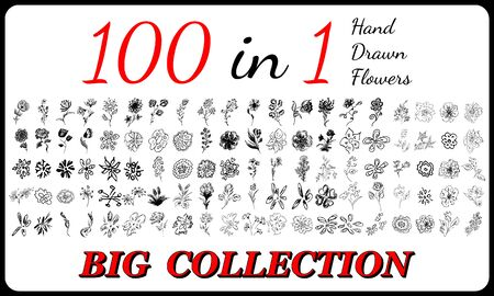 Big collection of 100 hand-drawn flowers. Big floral botanical flowers set isolated on a white background. Hand drawn vector collection. Spring blossom. Floral bouquet decoration.
