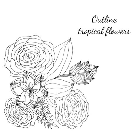 Outline hand drawn tropical flowers. Retro flowers hand outline orchid, great design for any purposes. Vector illustration. Tropical plant for coloring book. Design elements. Abstract art background.