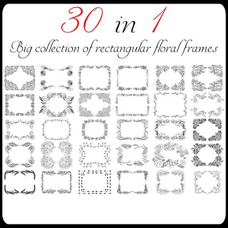 Big collection of 30 rectangular floral frames. Big floral botanical flowers set isolated on a white background. Hand drawn outline vector collection. Spring blossom. 向量圖像