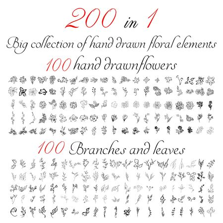 Huge collection of 200 hand-drawn floral elements. Big collection of 100 hand-drawn flowers and 100 brunches and leaves. Big floral botanical set isolated on a white background.